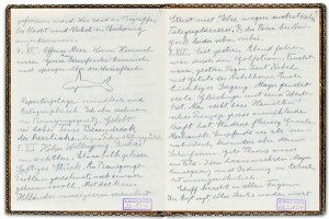 Albert Einstein's Journal